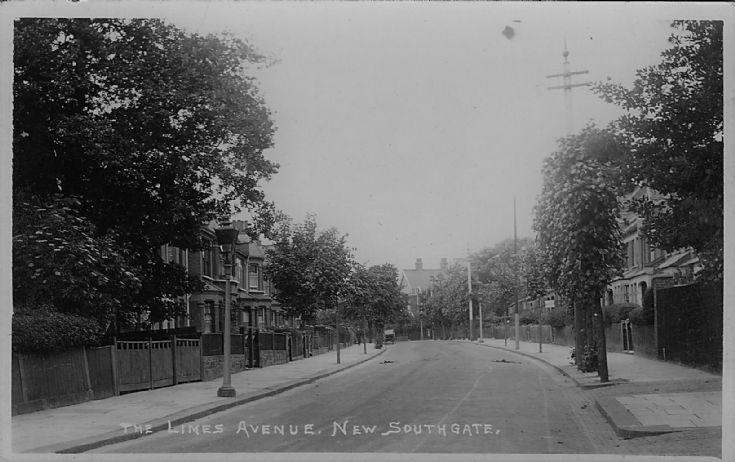 Limes Avenue, N11