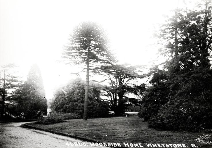 High Road, Whetstone