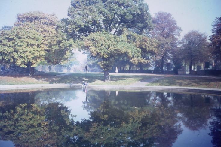 Friary Park