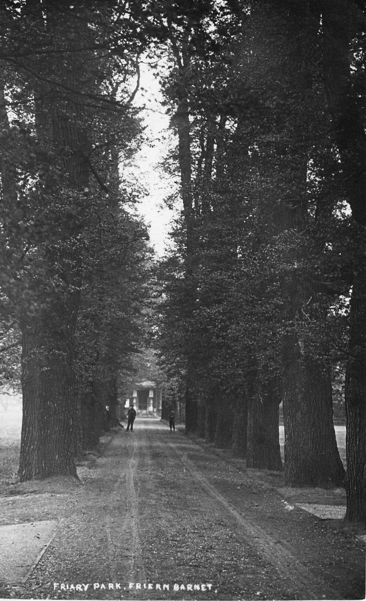 Friary Park. The Avenue