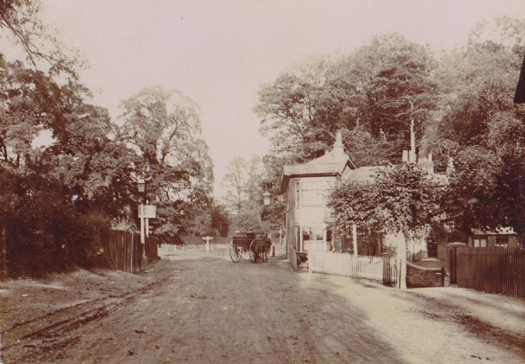The Triumph, Summers Lane